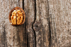 Open walnut Stock Photography
