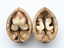 Open walnut Royalty Free Stock Photography