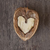Hearted walnut Stock Images