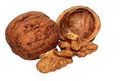 Open walnut. Isolated picture of a walnut opened Royalty Free Stock Image