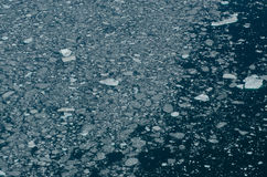 Open water with pack ice Royalty Free Stock Photos