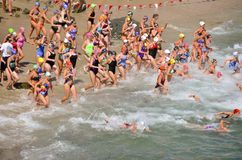 Open Water Swim Royalty Free Stock Photography