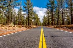 Open weg in Californië Royalty-vrije Stock Foto