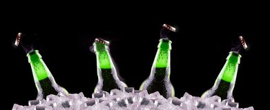 Open wet beer bottles on ice Royalty Free Stock Photo