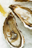 Open wet oysters on a plate with lemon and oysters knife with wi Stock Photos