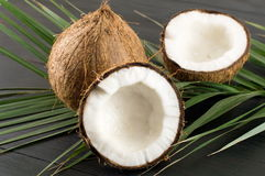 Open and whole coconuts and palm leaves Royalty Free Stock Images