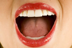 Open wide Royalty Free Stock Images