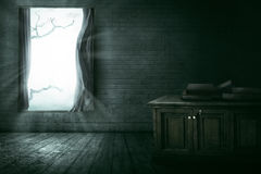 Open window with branch Royalty Free Stock Photography