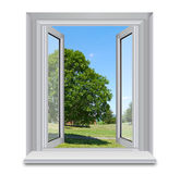 Open window and countryside. Open window overlooking leafy tree in green countryside with blue sky background; isolated on white Royalty Free Stock Images