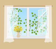 Open window with curtains on a beige background. Outside the window there are tree branches with green leaves. There is a bouquet of mimosa and daffodils on Stock Photos