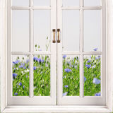Open window with green grass and blue flowers on background Royalty Free Stock Photo