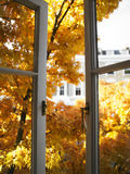 Open Window and Trees stock photography