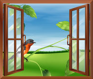 An open window with a view of the bird outside Stock Image