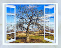 open window view of early spring Stock Photos