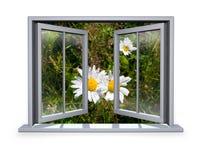 Open wit venster met het oog op de bloem Stock Afbeelding