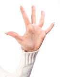 Open woman hand Stock Image