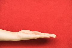 Open a woman's hand palm up  on red background Royalty Free Stock Photo