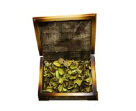 Open wooden casket Royalty Free Stock Photos