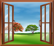 An open wooden window Stock Image