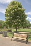 Openbaar park in Boise Idaho Royalty-vrije Stock Afbeelding