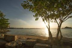 Openbaar park dichtbij strand Sriracha Thailand royalty-vrije stock foto's