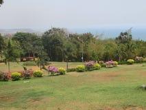 Openbaar tuin mooi gazon met zeer mooi het kijken met kleurrijke bloem Royalty-vrije Stock Foto