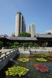 Openbare Nan Lian Garden stock foto