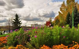 Openbare tuin Royalty-vrije Stock Fotografie