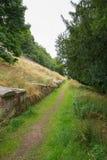 Openbare Weg door een Ongebruikte Begraafplaats Royalty-vrije Stock Fotografie