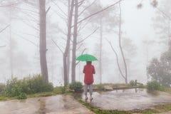 Opende de rode laag van de vrouwenslijtage terug groene parapludraai met mist stock foto's
