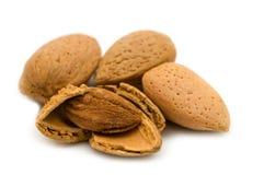 Opened almond Stock Photo