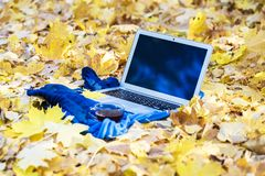 Opened aluminium laptop and autumn background Selected focus royalty free stock images