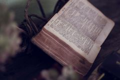 Opened Bible Near Green Painted Wall Stock Images