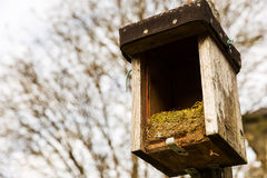 Opened birdhouse with old nest Royalty Free Stock Photo