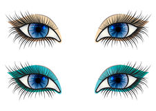 Opened blue feminine eye Stock Photography