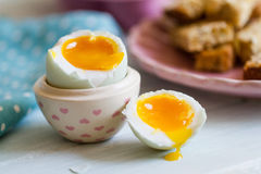Opened boiled blue duck egg with soft yolk Stock Photos