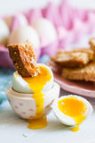 Opened boiled blue duck egg with soft yolk with toast soldier di Royalty Free Stock Photography