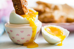 Opened boiled blue duck egg with soft yolk with toast soldier di Royalty Free Stock Images