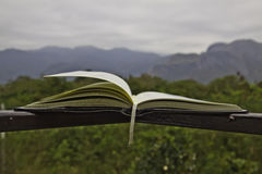 The opened book Stock Images