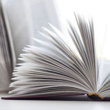 The opened book Royalty Free Stock Images
