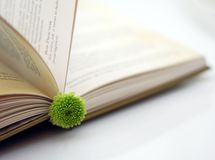 Opened book. Brake in reading book - opened hard-back book tasseled by small green flower Stock Photo