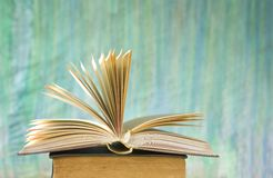 Opened book close up, Royalty Free Stock Photo