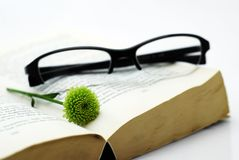 Opened book with glasses and flower. Brake in reading book - opened book with small green flower and modern looked glasses in black Stock Image