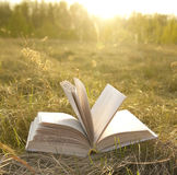 Opened book with landscape. Lying on yellow grass on sunset Stock Photography