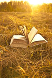 Opened book with landscape. Lying on yellow grass on sunset Royalty Free Stock Image