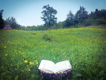 Opened book in meadow royalty free stock photography