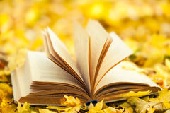 Opened book. Over nature background Royalty Free Stock Photography