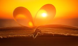 Opened book close up on sunset background. Opened book with pages in shape of a heart close up on sunset background Royalty Free Stock Photos