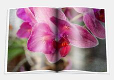 Opened  book with a picture  lilac violet orchid Stock Photo