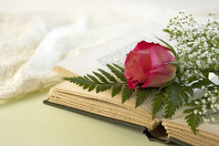 Opened Book and a Single Red Rose. A single red rose lays on an opened vintage book with a green fern leaf and baby breath flowers with a lacy negligee in the Stock Images